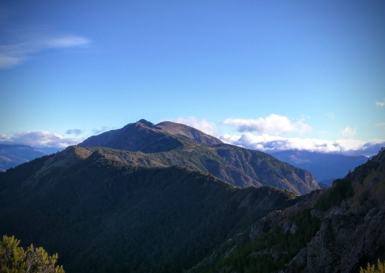 Photo 3 of Mount Patriarch Lookout